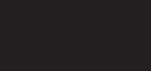 mim_logo_bvgn
